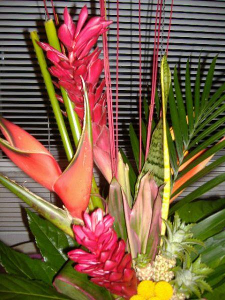 fleurs14.jpg
