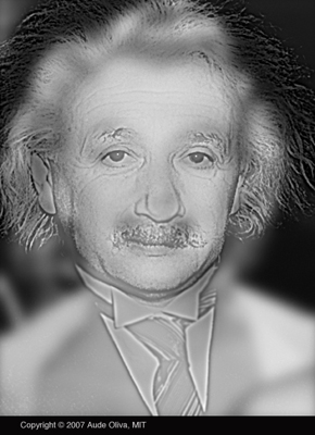 illusionsmonroeeinstein1.jpg