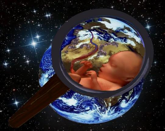 foetusfondnuit2bis1.jpg