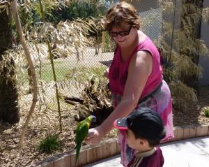 parc-oiseaux-2012-006-300x239 perroquets