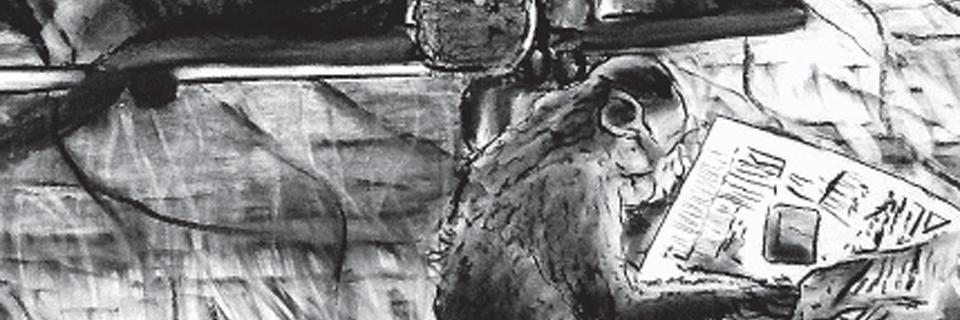 bandeau-affiche-exposition-clotilde[1]