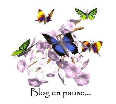 gifblog-en-pause-1[1]