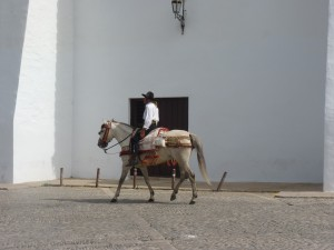 andalousie-2012-083-300x225