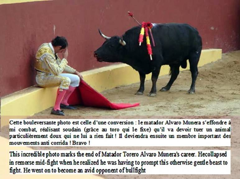 conversion-matador[1]