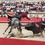 Corrida_with_horse[1]
